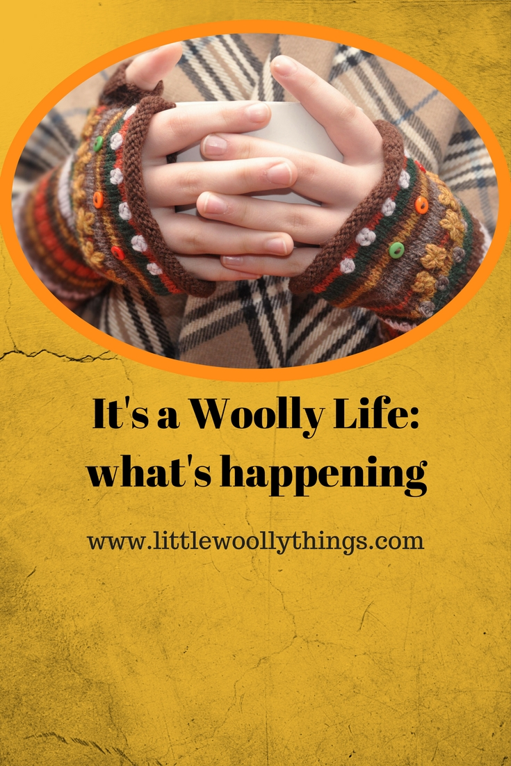 It's a woolly life: what's happening